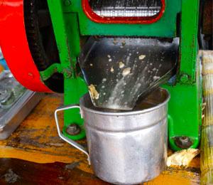 Is this Tulum's Mayan espresso machine?
