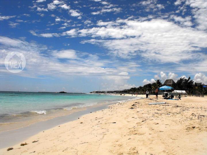 Zazil Ha, Playa del Carmen